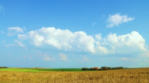 Farm n Clouds 5